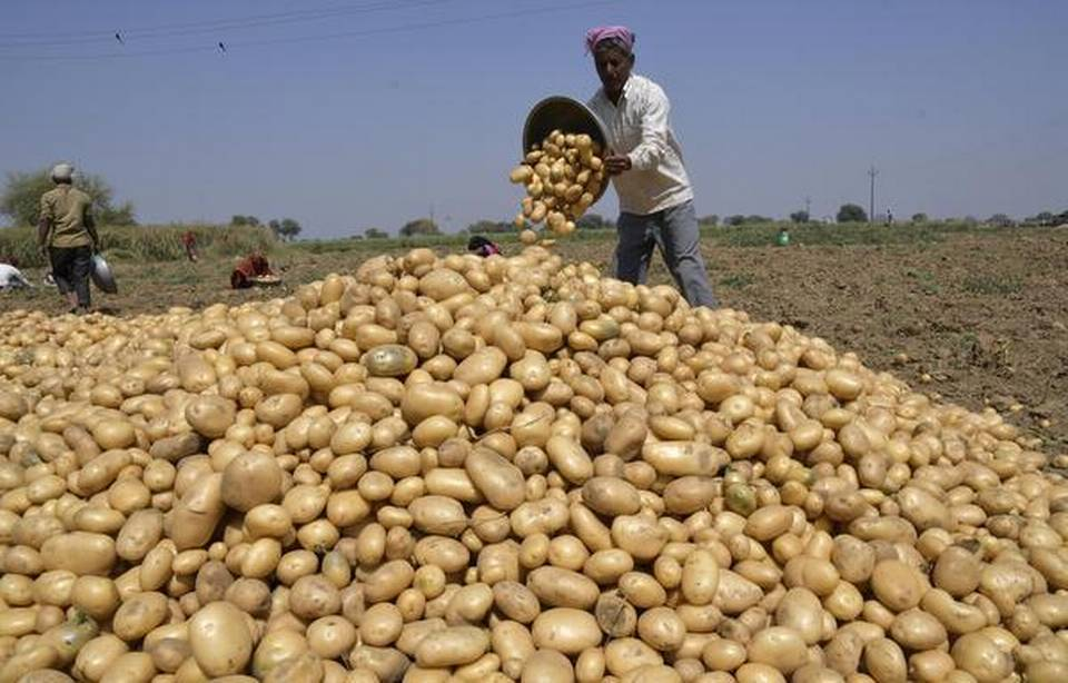 Image result for indian potatofarmers images