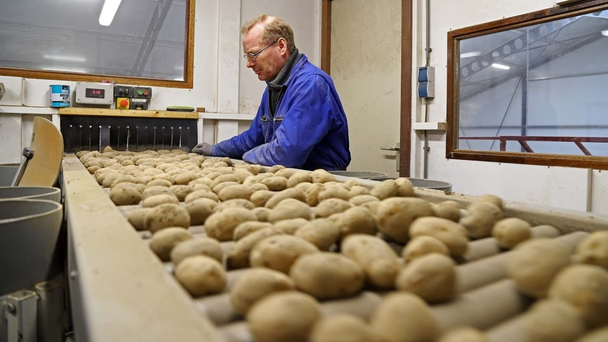 The Seed Potato Story: What goes on behind closed doors