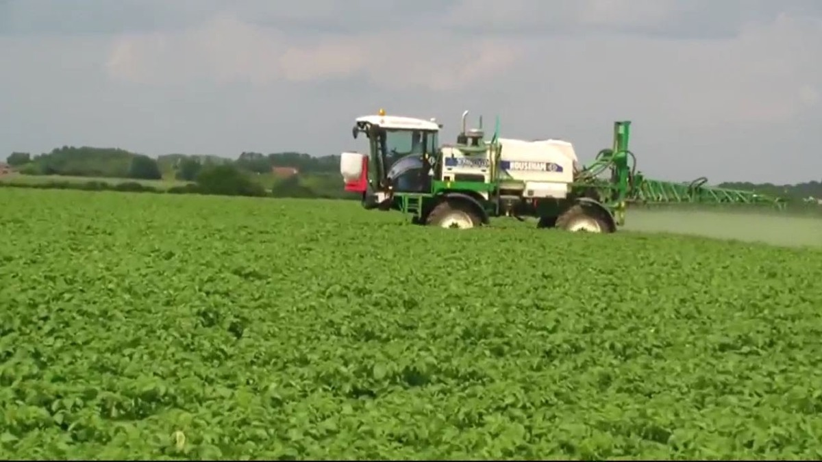 Potato weed control in the UK: Life after diquat